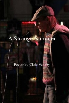 a stranger summer book