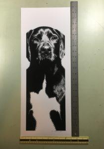 Murphy print